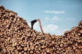 Hardworking business man solving problem on top of large pile of logs Royalty Free Stock Photos