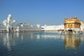 Harmandir sahib the golden temple is holiest shrine in sikhism it is located in city of amritsar india Royalty Free Stock Image