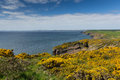 Haroldstone chins coast path wales pembrokeshire from near broad haven and st bride s bay druidstone haven in the Royalty Free Stock Photos