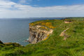 Haroldstone chins wales coastal path pembrokeshire from coast near broad haven and st bride s bay druidstone haven in the Stock Photos