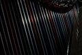 Harp strings close up Royalty Free Stock Photo