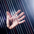 Harp strings closeup hands harpist with classical music instrument Stock Image