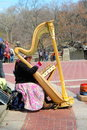 Harpspeler in central park Stock Afbeelding