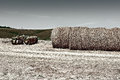 Harrow landscape with and hay bales in tuscany vintage style toned picture Royalty Free Stock Photos