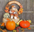 Harvest Autumn Doll Royalty Free Stock Photos