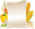 Harvest cereals and vegetable scroll Royalty Free Stock Image