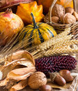 Harvest composition with corn pumpkins pomegranate and nuts Stock Photo
