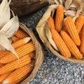 Harvest corn a farmer market Royalty Free Stock Photo