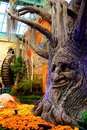 Harvest display las vegas sept autumn at the bellagio resort and casino conservatory on sept in nv the autumn in Stock Photos