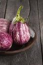 Harvest of eggplant graffiti on a dark wooden background. Royalty Free Stock Photo