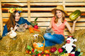 Harvest home two girl with rabbit cat and on hayloft at summer day Royalty Free Stock Photo