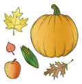Harvest Illustrations Royalty Free Stock Photography