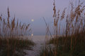 Harvest Moon Over The Gulf of Mexico Stock Images