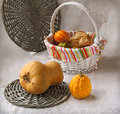 Harvest of pumpkins on a background a canvas Royalty Free Stock Photos