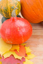 Harvest of pumpkins with fall yellow leaves Stock Photography