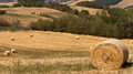 Harvest time agricultural landscape with hay bales in field cultivated Stock Image