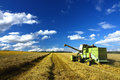 Harvest time ,combine machin and blue sky Royalty Free Stock Photo