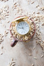Harvest time idea gold pocket watch and oats Royalty Free Stock Photos