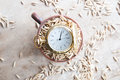 Harvest time idea gold pocket watch and oats Stock Image