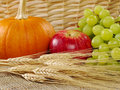 Harvest Time: Wheat with Apple, Grapes and Pumpkin Stock Image