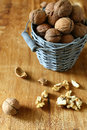Harvest of walnuts in a bucket food close up Royalty Free Stock Photos