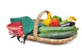 Harvested summer vegetables Royalty Free Stock Photo