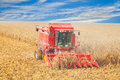 Harvester in the field harvest autumn on a clear day Royalty Free Stock Photography
