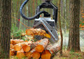 The harvester working in a forest. Royalty Free Stock Photo
