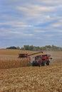 Harvesting Cornfield Royalty Free Stock Photo