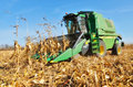Harvesting the crop with combine
