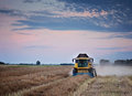 Harvesting oilseed rape. Royalty Free Stock Photo