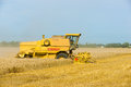 Harvesting wheat during the end of summer Royalty Free Stock Image
