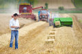 Harvesting young landowner with laptop supervising work Stock Photos
