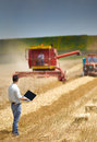 Harvesting young landowner with laptop supervising work Stock Photography