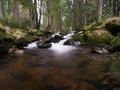 Harz mountain river small stream after winter season in the mountains Stock Photos