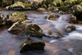 Harz Stream Royalty Free Stock Images