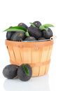 Hass Avocados in Basket Royalty Free Stock Images