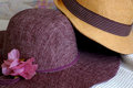 Hats male and female hat with a pink flower Stock Images