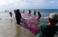 Hauling in the nets. Philippines.