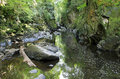 Haunted Fairy Glen Betws-y-coed Royalty Free Stock Photography