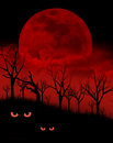 Haunted forest a scary night in the woods with evil red eyes and a large moon Royalty Free Stock Images