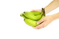 Have a banana woman s hands giving away some nutrient rich bananas Royalty Free Stock Photo