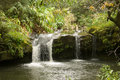 Hawaii Waterfall Royalty Free Stock Photo