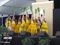 Hawaiian Dance Troupe Royalty Free Stock Photo
