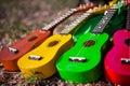 Hawaiian Instrument Ukulele