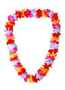 Hawaiian lei necklace isolated on white background Stock Photos
