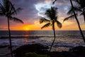Hawaiian Palm Sunset Royalty Free Stock Photo