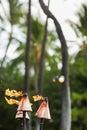 Hawaiian tiki torches Royalty Free Stock Photo