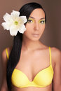 Hawaiian woman with Flower.sexy girl in bikini Royalty Free Stock Photo