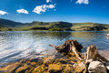Haweswater resevoir with old tree stump is a reservoir built in the valley of mardale and flooded in Royalty Free Stock Photo